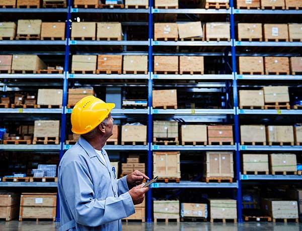 supply chain y el mejor wms
