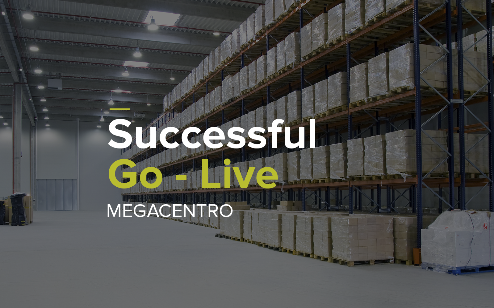 Megalogística Prepares for the Migration of its more than 150 Clients with Infor WMS